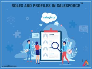 Roles and Profiles in Salesforce