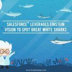 Salesforce Leverages Einstein Vision To Spot Great White Sharks